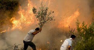 دنیایی که ما ساختیم - آتش سوزی